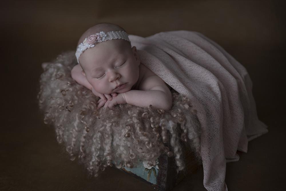 newbornshoot janneke van den berg fotografie